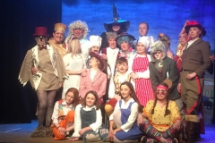 Cast of the 2019 Pantomime